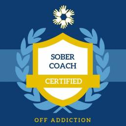 Sober Coach and Sober Companion Services in Sydney